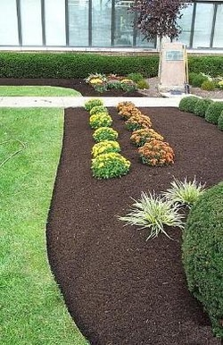 Bark Mulch Installation For Grand Rapids Mi And Surrounding Areas